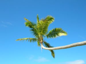 Weather In Fiji -  What Is The Best Time To Visit Fiji