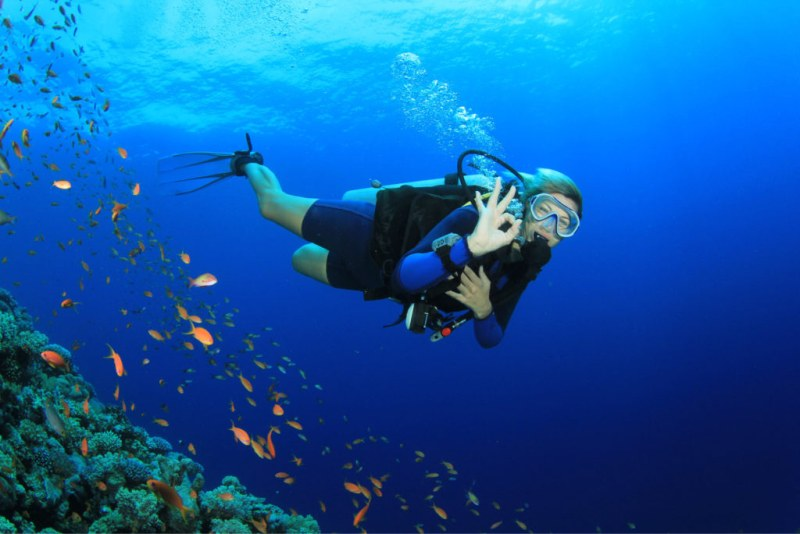 woman diving fiji